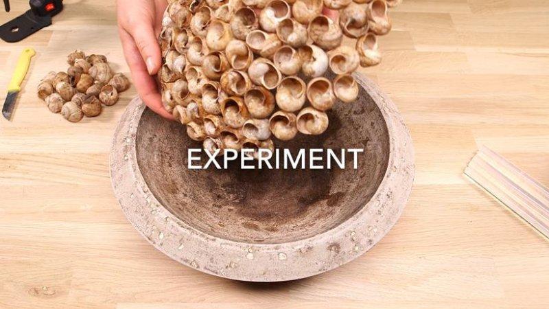 OEP2ENGscreenshot experiment.141809