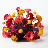 OASIS Black Ideal design Roos van Unen -  Flower Factor