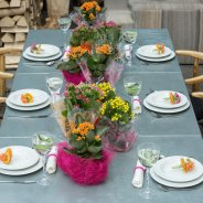 Table decoration with Kalanchoe  - inside