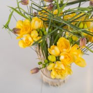 Freesia standing in tall grass detail