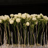 spray rose Snow World in Christmas flower arrangement by Pim van den Akker