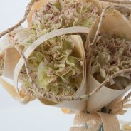 Dianthus in wooden cones close-up
