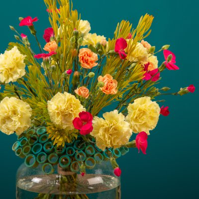 Colourful frame bouquet with cheerful carnations