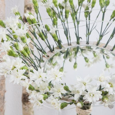 Reflecting Dianthus bouquet