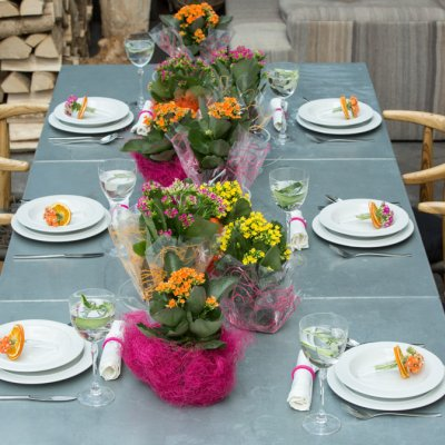 Colourful table decoration with Kalanchoe