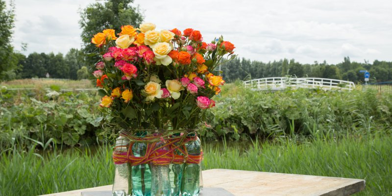 Recycle design with colourful spray roses