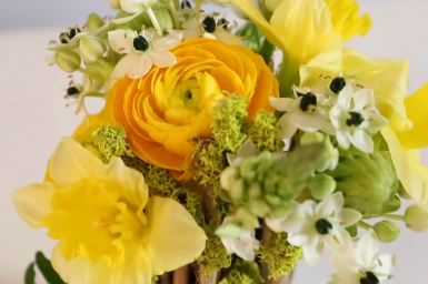 Spring composition with ornithogalum