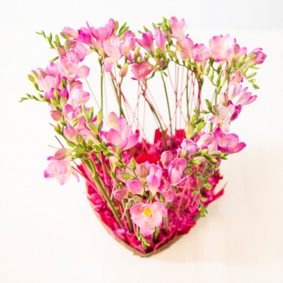 Freesia Heart