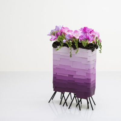 50 shades of purple - Freesia Freestyle