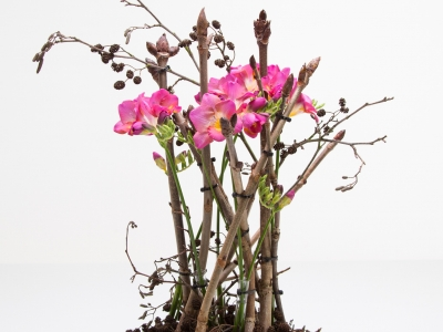 Autumn style floral arrangement with Freesia