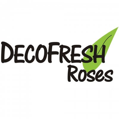Decofresh Roses